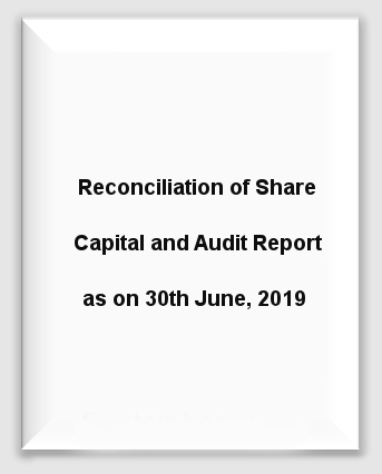 Marine Reconciliation Share Capital Audit Report 30th June 19